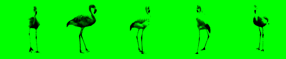 Banner_flamingo_grøn.png